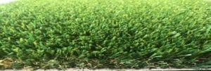 Albany green Artificial grass Perth Wa turf gurus