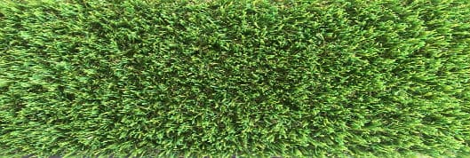 canarven-summer-commercial-turf-perth