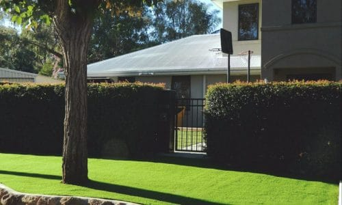 Artificial grass Perth Front Yard 6000 2 1