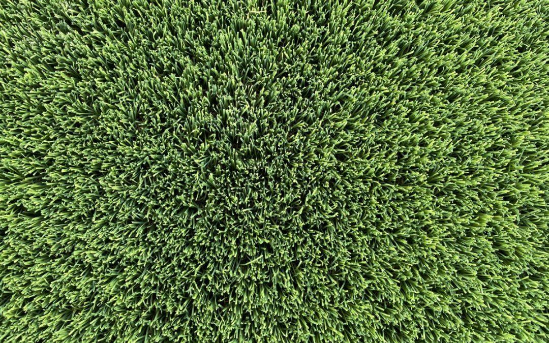 Synthetic Grass installation Perth-{Pro Guide}-WA Turf Gurus