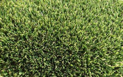 Artificial Grass Perth {Resource Guide} WA TURF GURUS