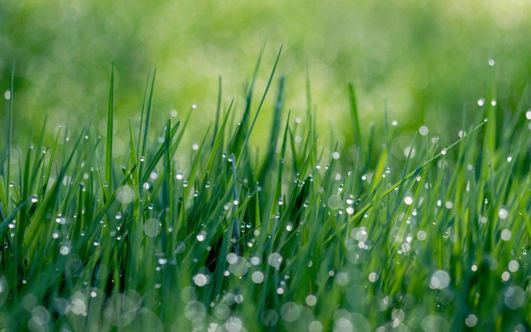 Does artificial grass gets hot in Perth ?