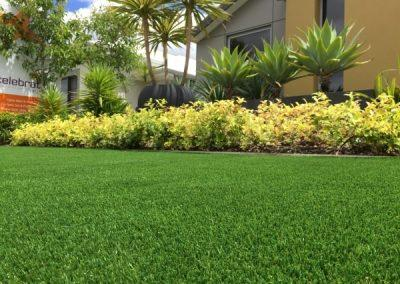 Best Quality artificial lawn Front yard Perth