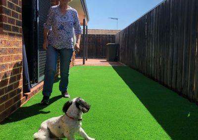 artificial-grass-back yard installation Perth